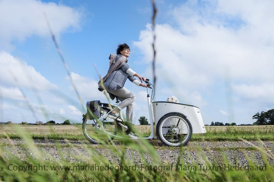 Anette Søndergaard fra Vejle lider af sclerose. Alligevel knokler hun for at holde sig i gang ved at cykle og træne. (Scleroseforeningen)