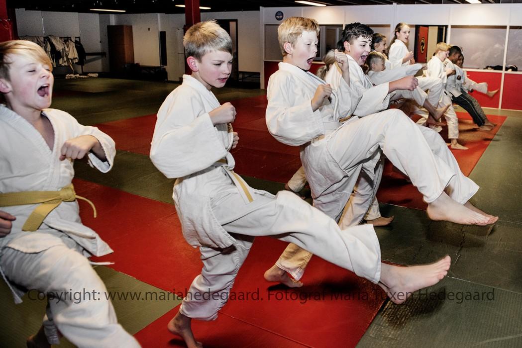 Jui jitsu klubben i Idrætsbygningen i Kolding. (JydskeVestkysten)